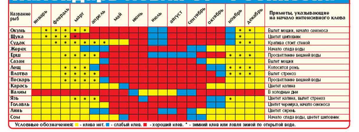 календарь клева карася москва